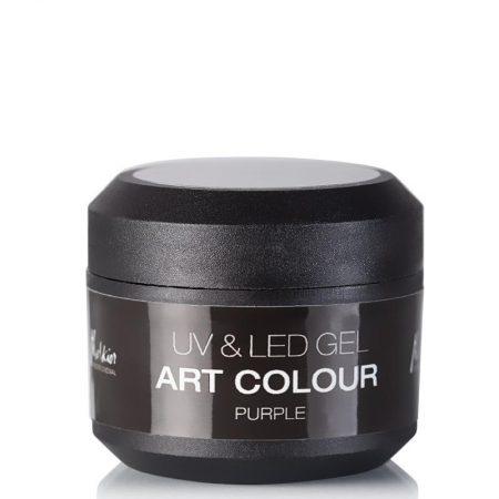 GEL UV & LED ART COLOR 5GR
